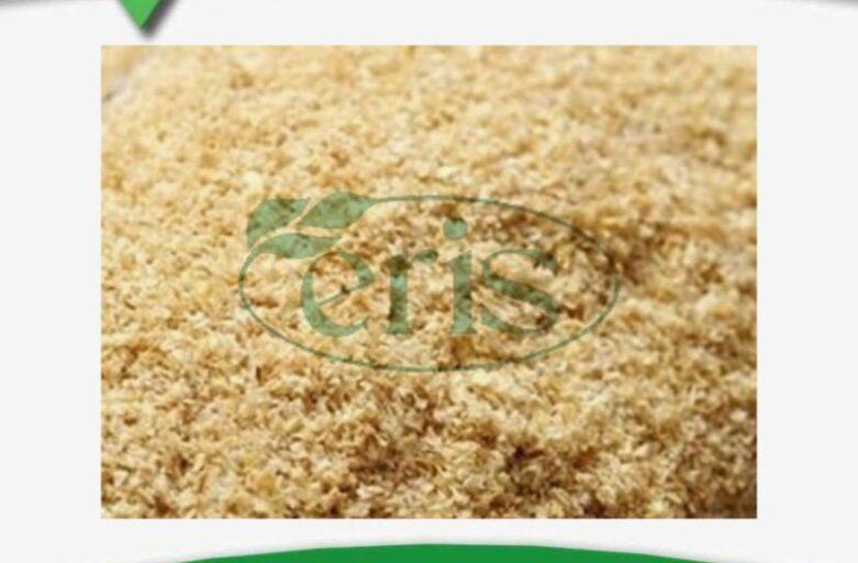 فروش پوسته ذرت در صنعت خوراک دام