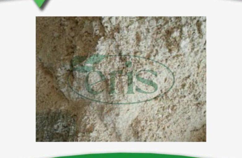 فروش آرد گندم در خوراک دام