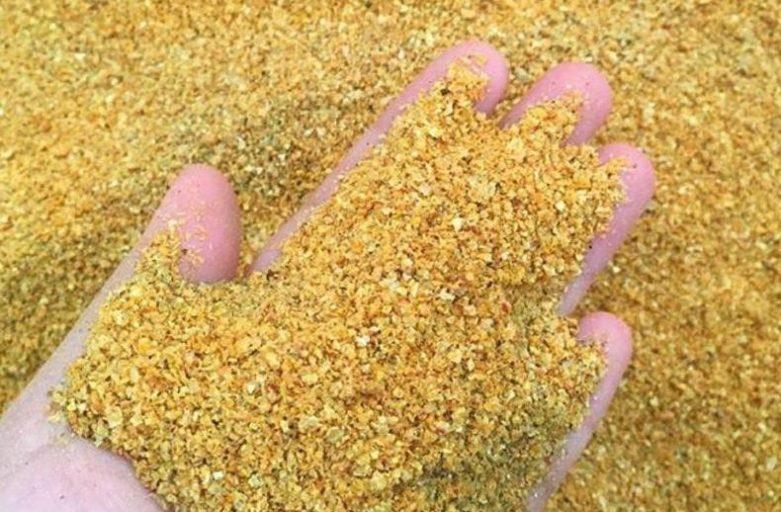 واردات گلوتن ذرت در خوراک دام