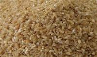 صادرات  گندم شکسته در خوراک دام